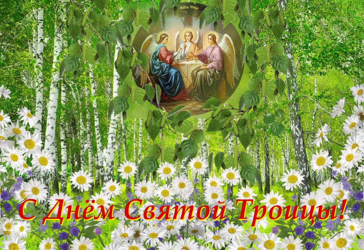 http://cs604518.vk.me/v604518378/13d43/loFbKJU4iEw.jpg