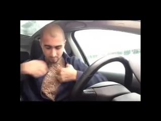 Когда полиция останавливает _ when police pull you over