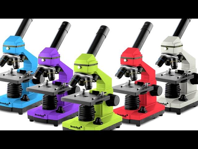 Как выбрать микроскоп видеообзор для любителей микромира