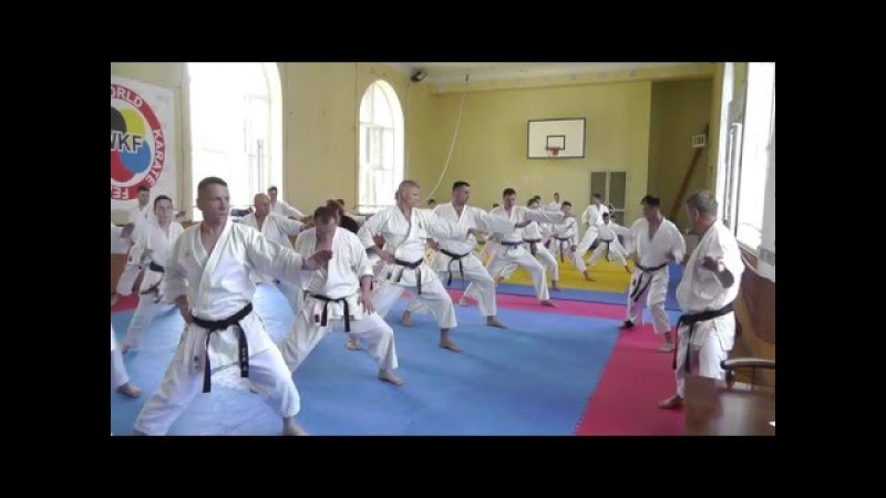 Семинар по Каратэномичи Запорожье 15 05 2016 Часть 1 Karatenomichi seminar