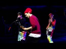 Goodbye Angels -  Live -  Red Hot Chili Peppers - 2016 - HD