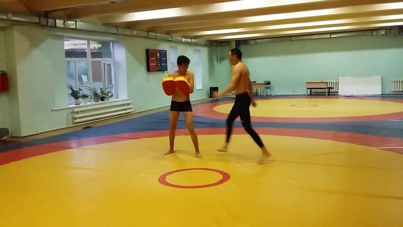 Middle Kick skills