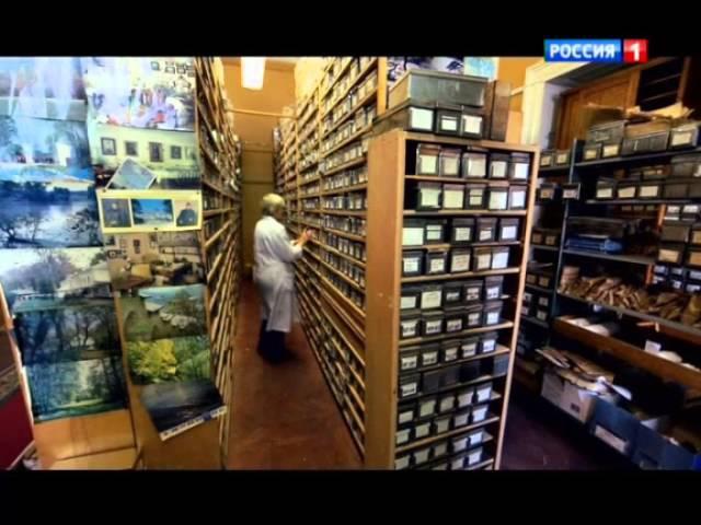 Николай Вавилов. Накормивший человечество. Документальный фильм