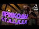 Приколы S.T.A.L.K.E.R. #10