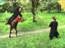 Тренировка боевого коня