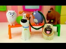 Тайная жизнь домашних животных трюки из цирка. Прикольное видео с игрушками для детей.