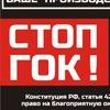Рабочая группа по проблеме Томинского ГОКа