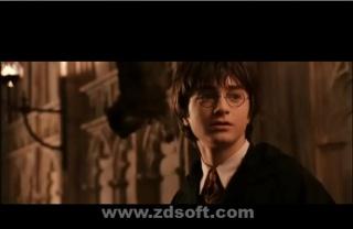 Harry Potter en de geheime kamer.