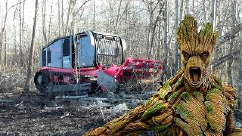 Как выкорчевать пень. How to uproot the stump. Wie Baumstumpf zu entwurzeln