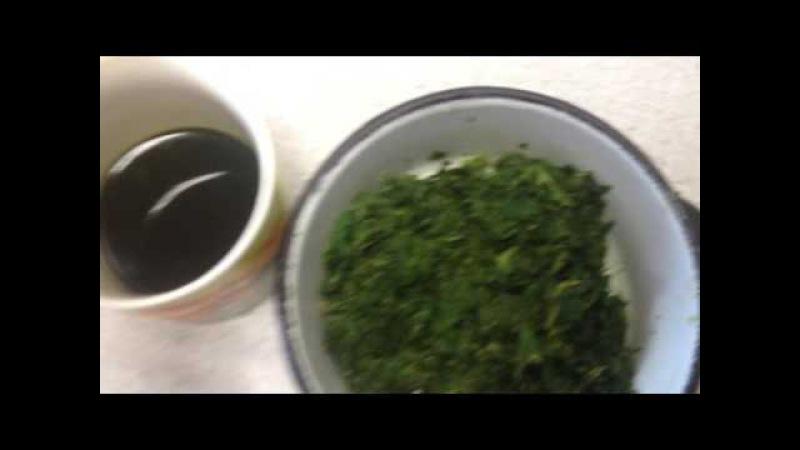 Как выжать сок из лопуха своими руками быстро и удобно