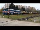 2ТЭ116-829 с товарным поездом следует по перегону Любятово — Берёзки.