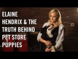 Elaine Hendrix Uncovers the Truth Behind Pet Store Puppies