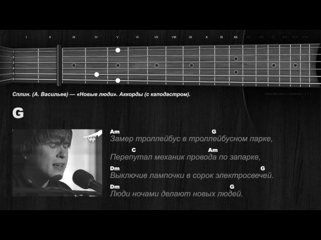 Сплин А Васильев Новые люди Аккорды с каподастром
