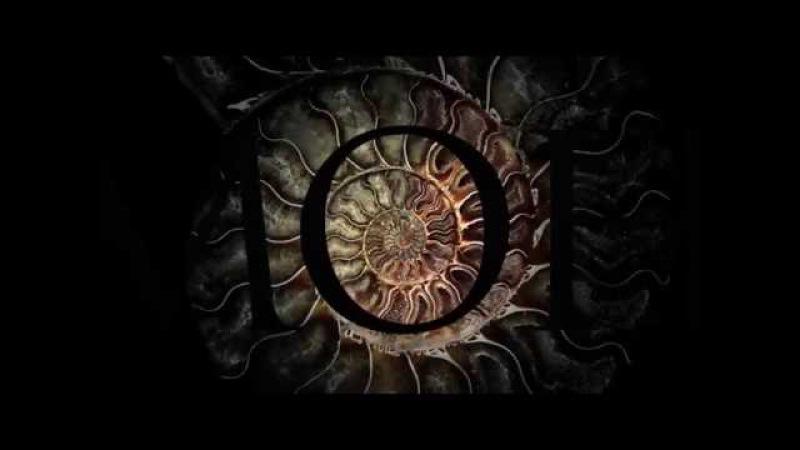 Аммонит - клип 1