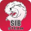 SIB.Steam Saint-P