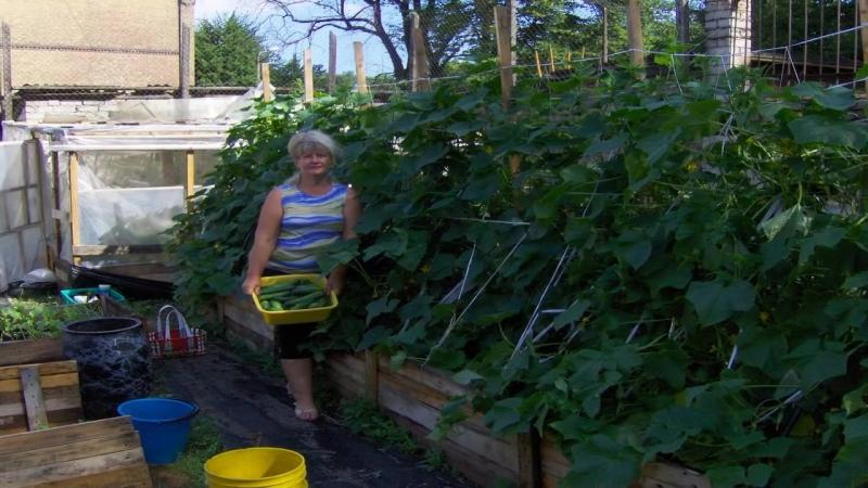 Садовник своими руками