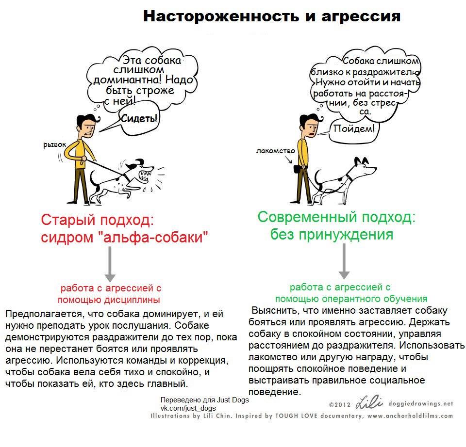 https://pp.vk.me/c604521/v604521869/3ffcf/cx-dmvi-7yM.jpg