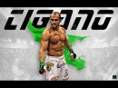 Junior 'Cigano' Dos Santos highlights 2017 HD