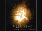 Polar Bear -- To Touch The Red Brick