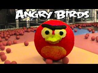 Ангри Бердс огромный яйцо сюрприз игрушки открываем Angry Birds énorme surprise oeuf jouet ouverte