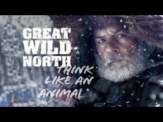 Великий дикий север 3 серия Сделай или умри (2016) - Видео Dailymotion