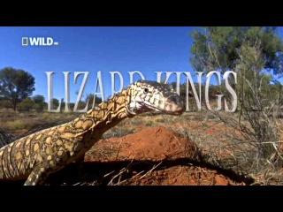 Король ящериц / Lizard Kings (2009) HD1080p