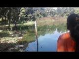 boy girls casing piss || Dhaka Zoo Boy And Girl toga tar  casing phis 2017 || Zoo