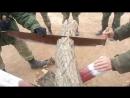 армейская бензо пила