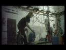 """За кулисами цирка - 1. Расследование Центра защиты прав животных """"ВИТА"""""""