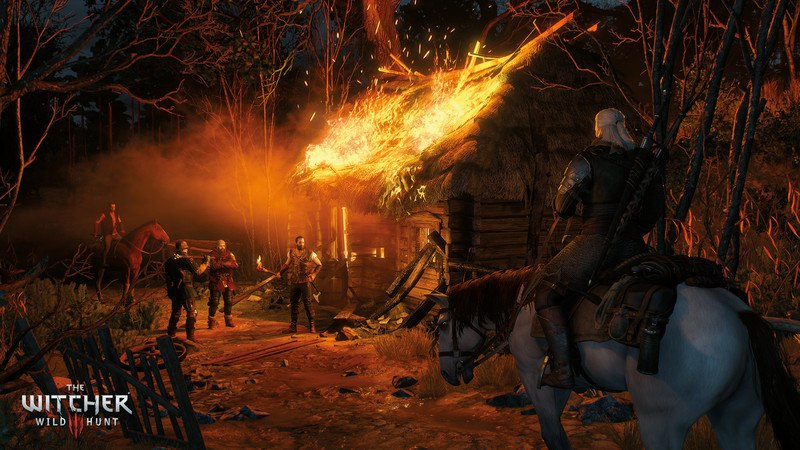The Witcher 3 Wild Hunt - Game of the Year Edition [GOTY] (2015) PC - Скриншот 3