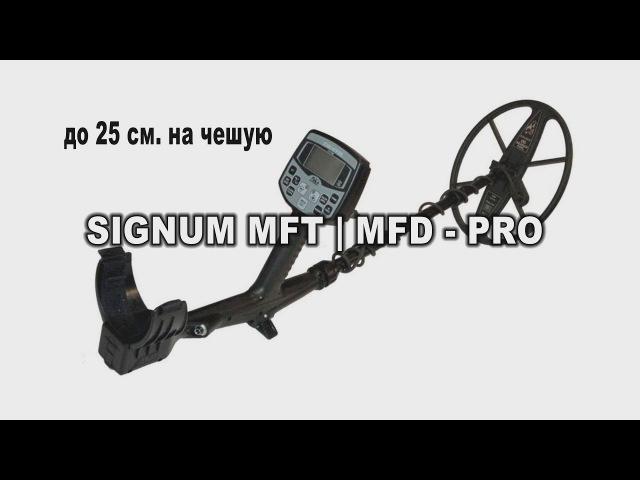 ТОП 5 Самых лучших металлоискателей по чешуе!