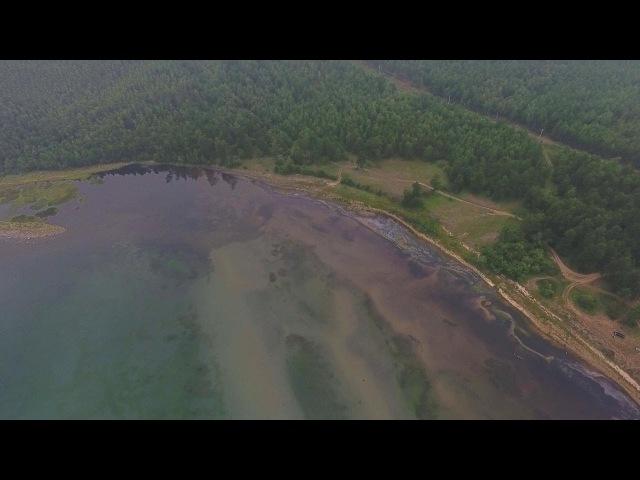 Берег Байкала превращается в зловонную болотистую местность