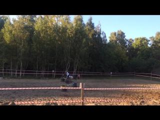 Конь.Девочка на коньке горбунке