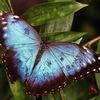 Мир Вдохновения - блог о красках жизни!