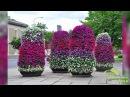 Цветники Многоярусная клумба своими руками. Фото