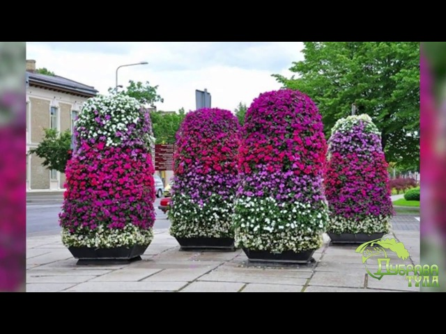 Цветники Многоярусная клумба своими руками Фото