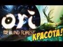 Ori and the Blind Forest: Красивая до жути игра! Прохождение 1