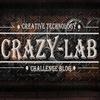 CRAZY-lab - нестандартный челлендж-блог