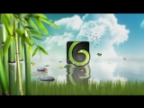 Nature Logo Revealer - VideoHive (After Effects)