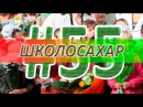 ШКОЛОСАХАР 55 ВЫПУСК В CSGO