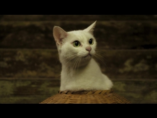 Кошка и самурай (3 Серия) (1 Сезон) (Рус.Субтитры) / Neko Zamurai / Samurai Cat (HD 720p)