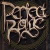 PERFECT RAGE | alt.metal