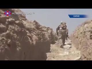 """Сирийские войска вошли в """"столицу"""" ИГ"""