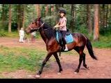 Тренировка на лошади 11-летней Ани в КК
