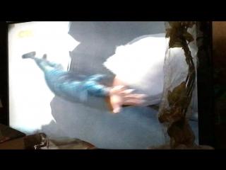 Монстры против пришельцев (реклама)