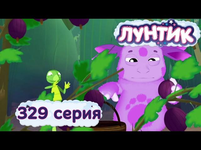 Лунтик и его друзья 329 серия Крыжовник