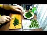 Как высаживать яванский мох  Java Moss