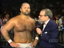 Arn Anderson vs Tim Horner   Pro Aug 26th, 1995