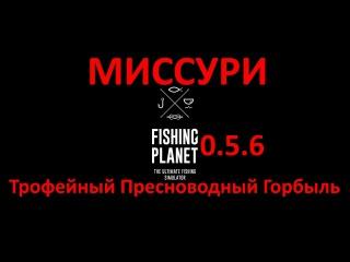 смотреть видео поклевка толстолобика подводная съемка