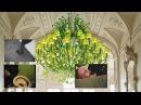 Green Lustre Part 2 [Зелёный слоник] MMV